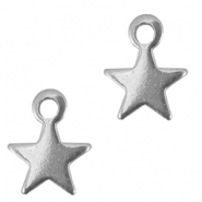 Stainless steel charm star Silver